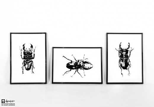 art ink animal beetle
