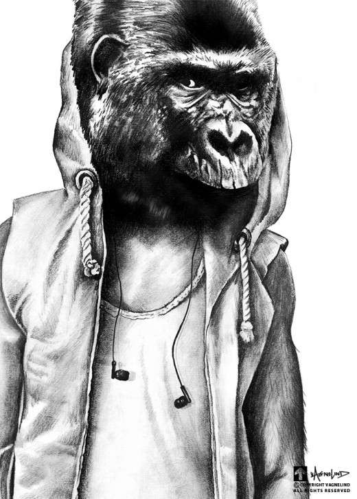 art pencil drawing portrait of a gorilla named frontrunner
