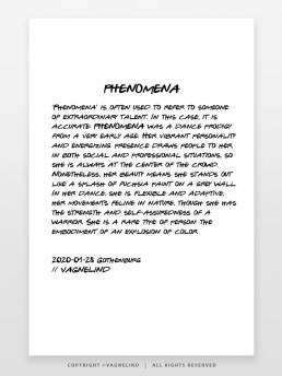 VAGNELIND Limited Fine Art Edition - PHENOMENA